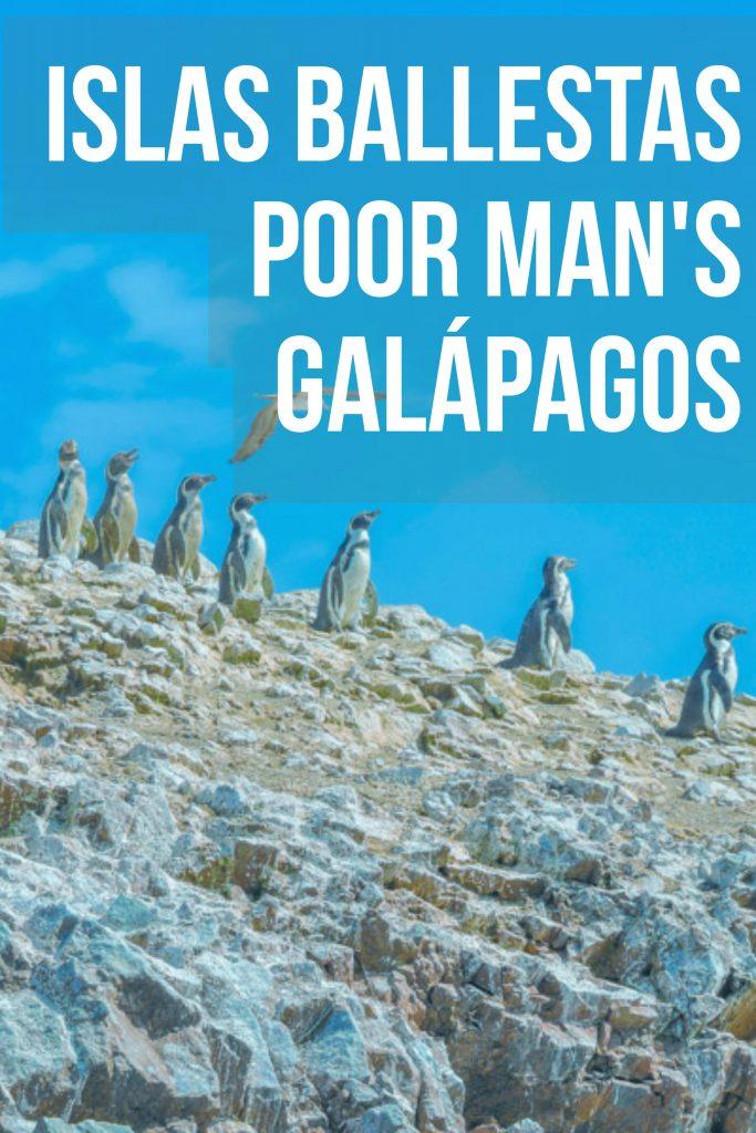Isas Ballestas Peru | Paracas