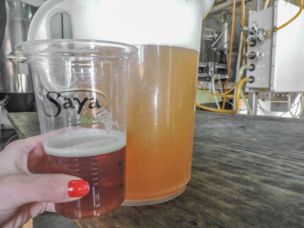Saya Beer Brewery Tour in La Paz I 10 Things to do in La Paz