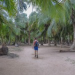 Tayrona National Park: First Timer's Guide