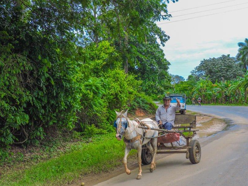 Cuba Vinales | Things to do in Vinales