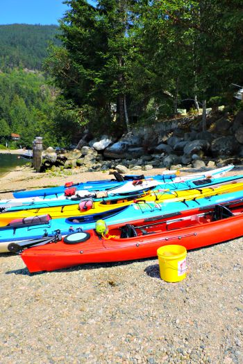 Kayaks Paddles and Pedals Sechelt BC