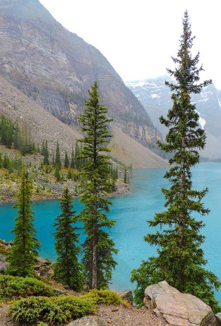 Small Pin Lake Moraine Alberta Rockies Photo of the Fortnight 13