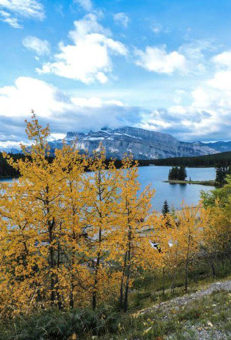 Jack Jones Lake Small Pinterest Jasper Alberta Rockies Photo of the Fortnight 13