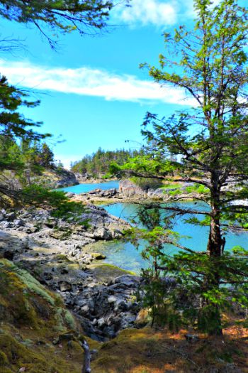 Smugglers Cove Pin Small Monthly Travel Round Up