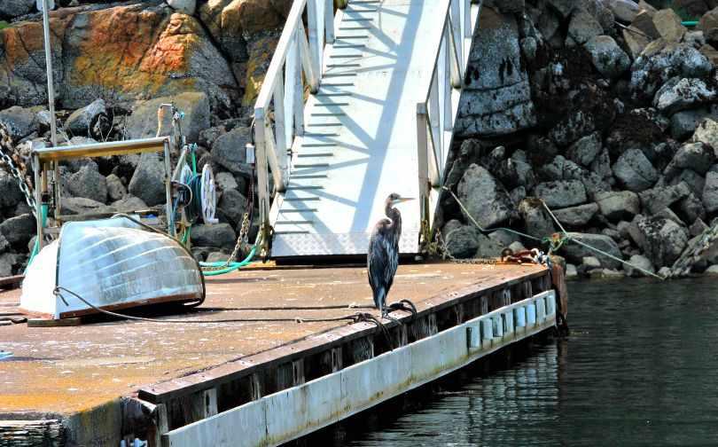 Madeira Park - Pender Harbour - Sunshine Coast BC Canada