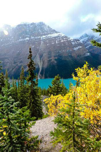 Peyto Lake, Canadian Rockies Lakes