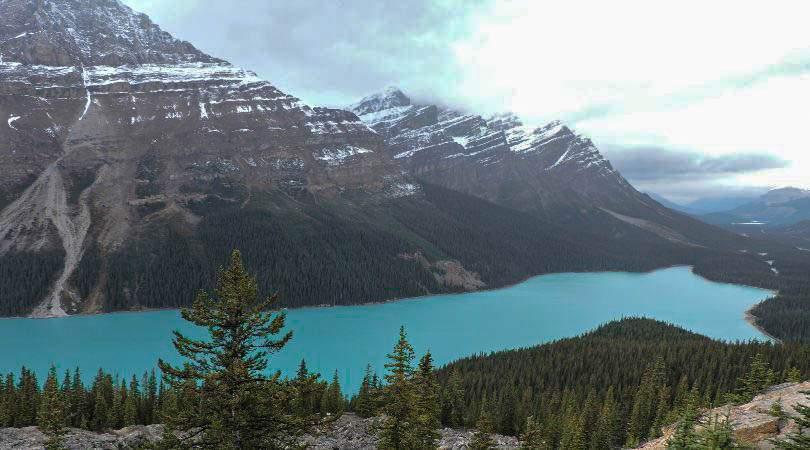 Peyto Rockies Lakes Canada