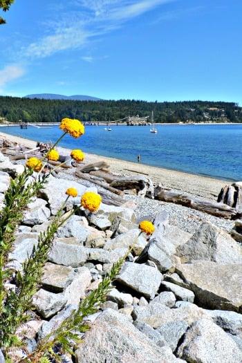 Sechelt - Sunshine Coast, BC - Canada