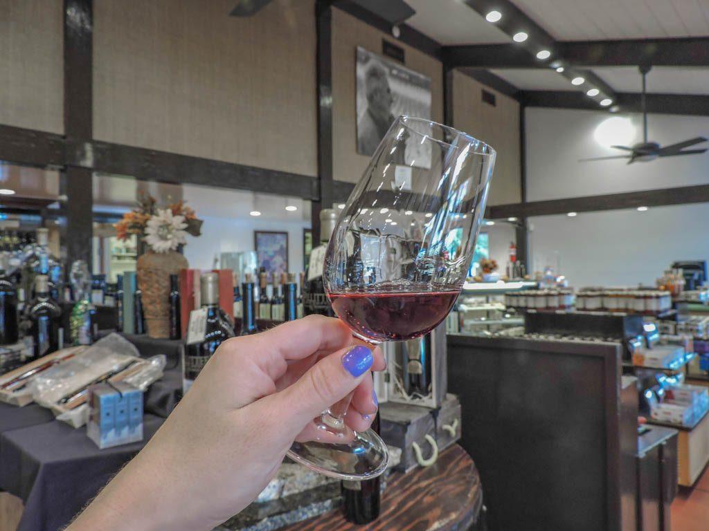 Pillitteri Estates Red Wine I Wine and Waterfalls I Niagara Falls, Ontario