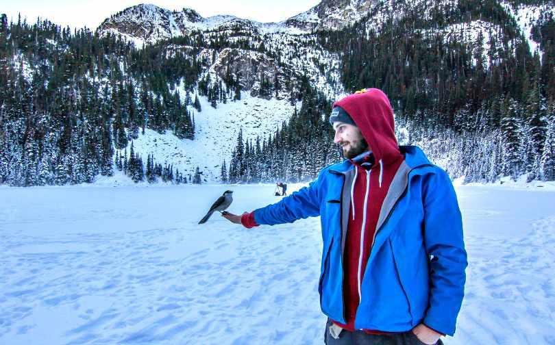British Columbia Budget Joffre Lakes Gray Jay Whiskey Jack
