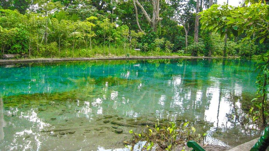 Ojo de Agua, Ometepe Nicaragua, via Flickr CC Garin Fons Things To Do On Ometepe