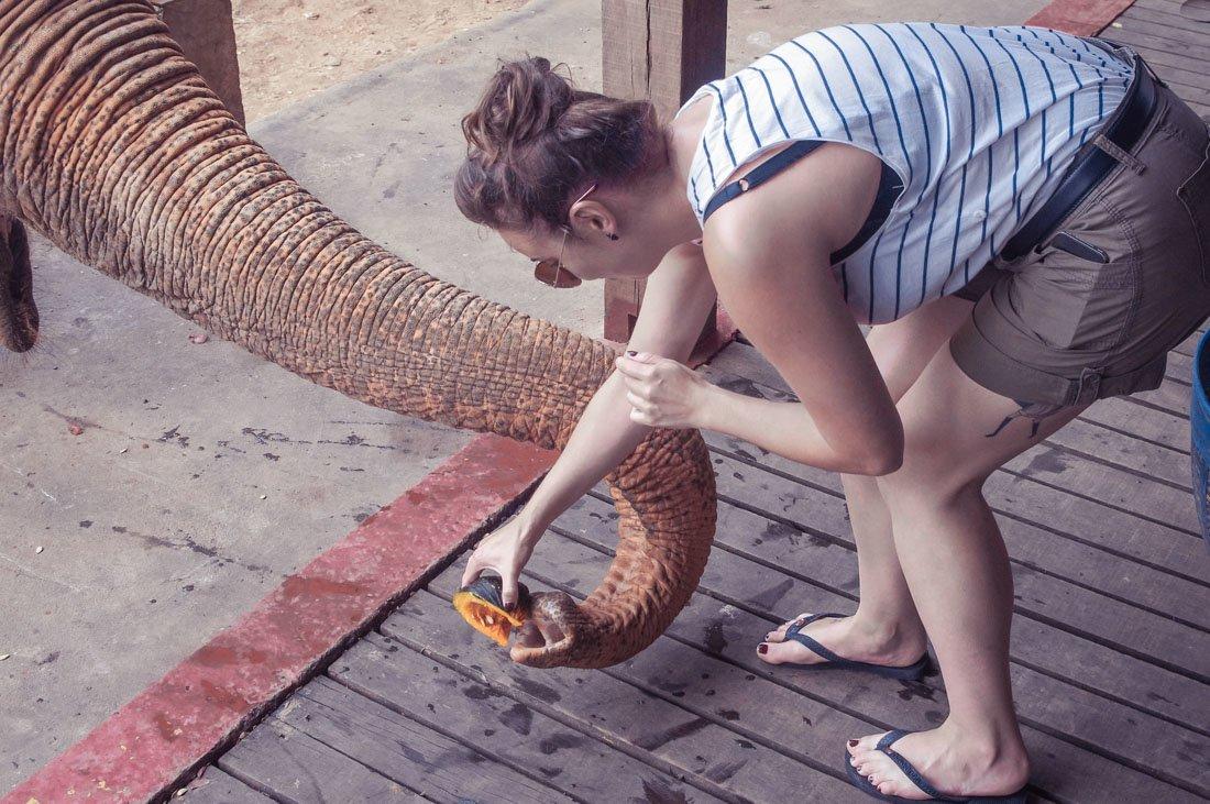 Havanianas Flip Flops Travel Gifts