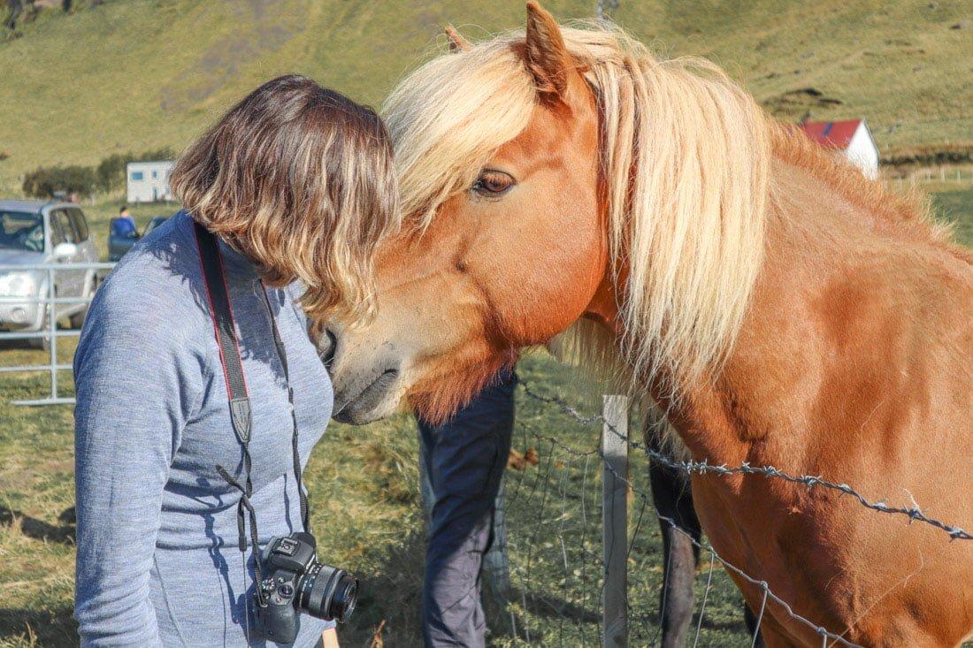 Merino Wool Top Iceland