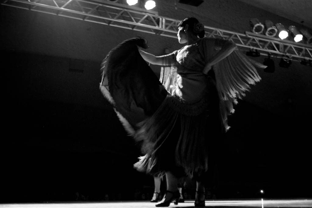 Flamenco Dancer I 10 Fun Things to do in Granada on a Budget