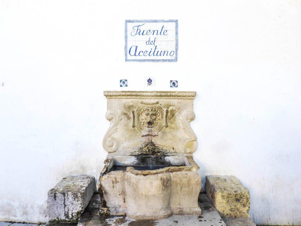 Fuente del Aceituno Granada I 10 Fun Things to do in Granada on a Budget