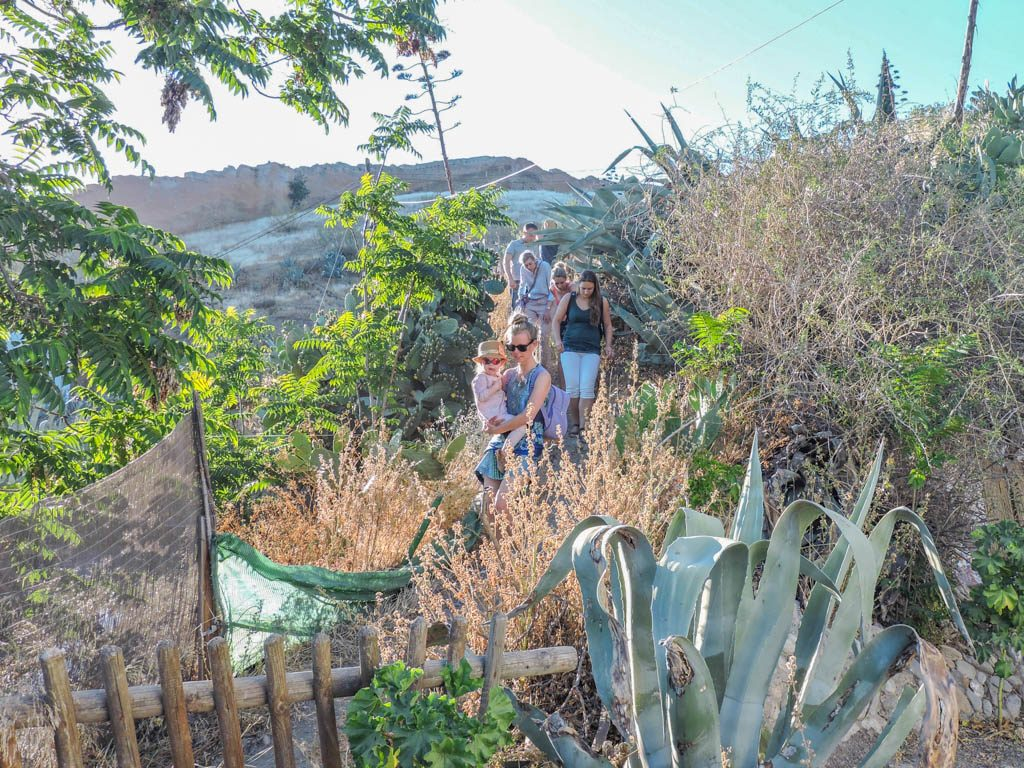 Hikes in Granada Spain I 10 Fun Things to do in Granada on a Budget
