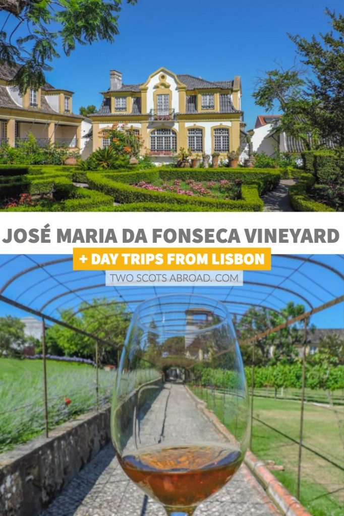 Visit a vineyard during a Lisbon day trip which also includes a trip to the coast and seaside towns in Portugal.