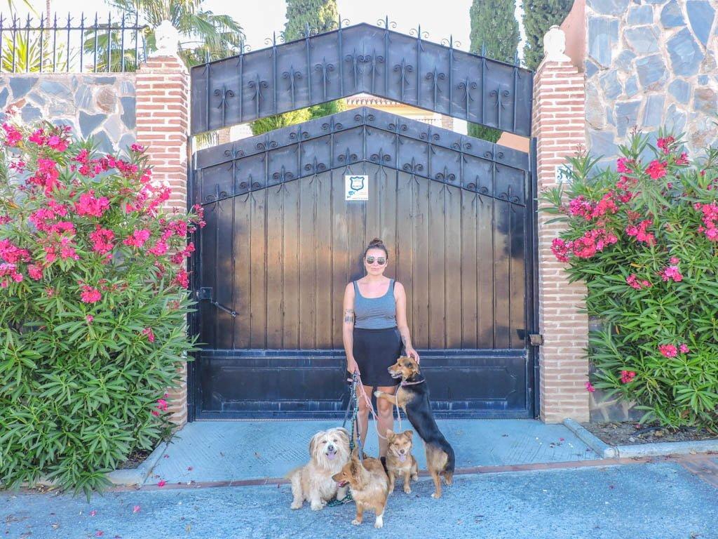 Dog Sitting in Granada I Long Term Travel Planning