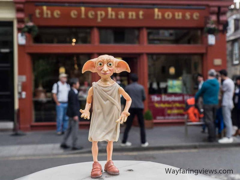 Dobby at The Elephant House credit Wayfaring Views | Things to do, see, eat in Edinburgh