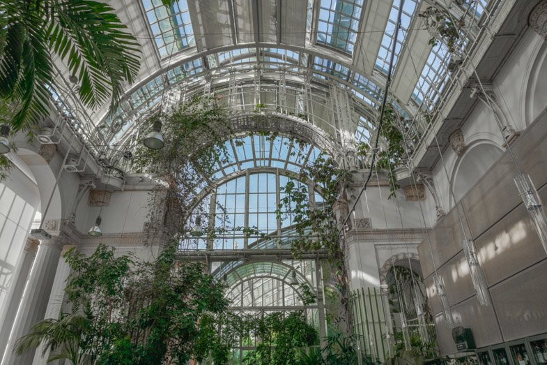 Palmenhaus Burggarten Things to do in Vienna