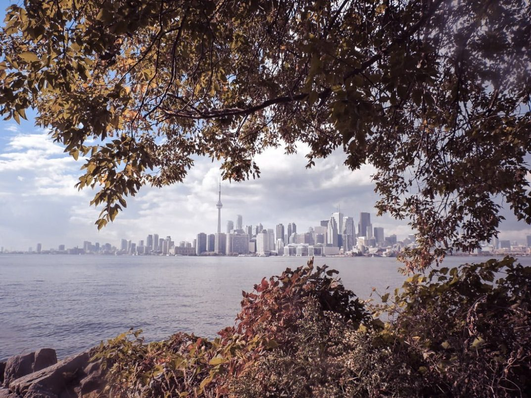 Unique Things To Do In Toronto