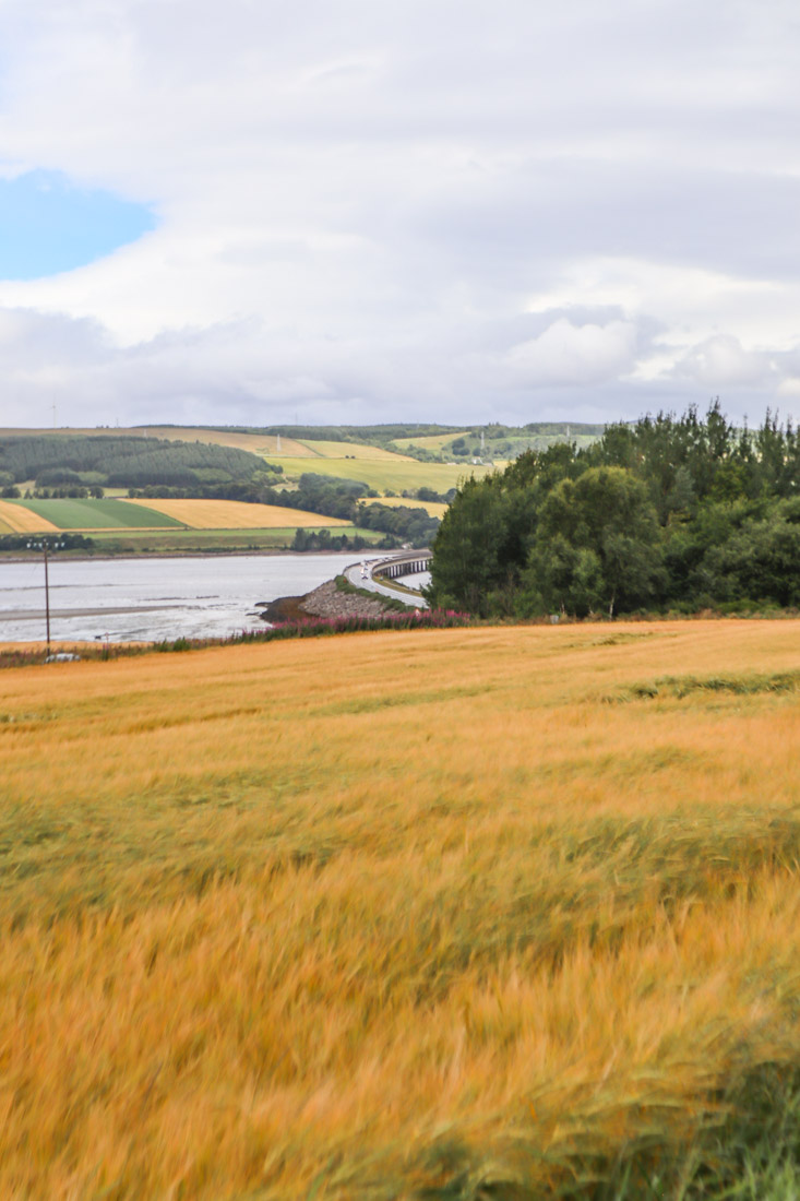 Cromarty Bridge Fields North Coast 500 in Scotland_