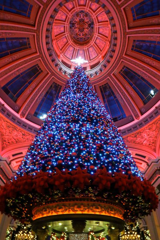 The Dome Christmas