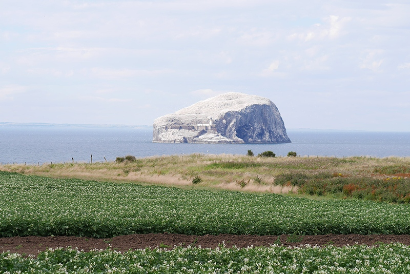 East Lothian Scotland Bass Rock