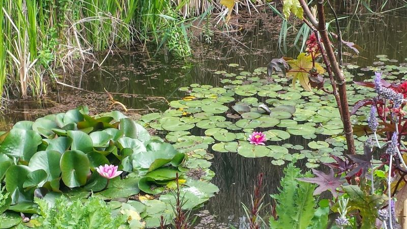 Marimurtra Garden-Blanes