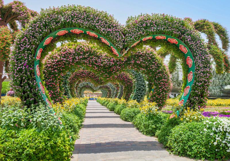 Miracle Garden Hearts Dubai