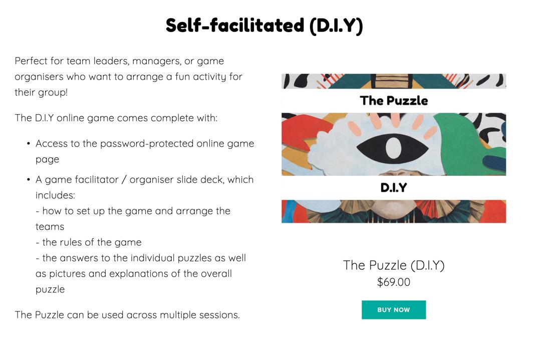 The Puzzle Self Facilitated Zoom Quiz