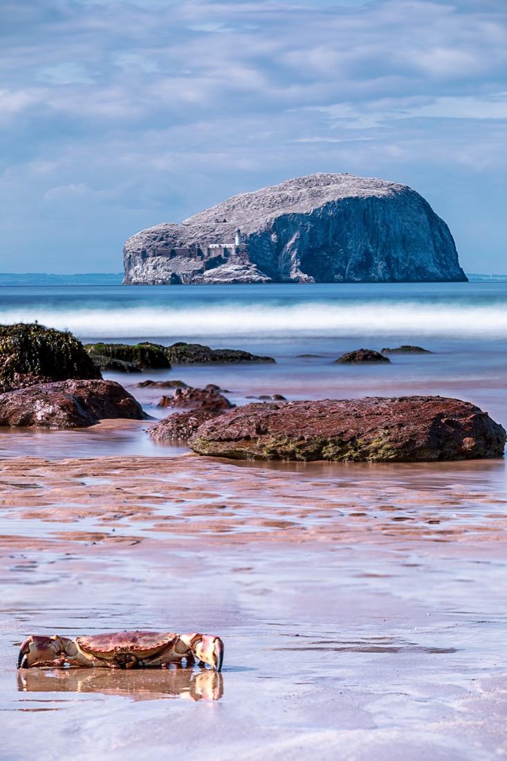 Bass Rock Island North Berwick